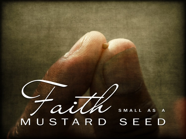 small-as-a-mustard-seed2